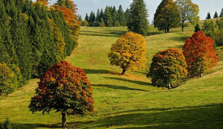 První podzimní víkend bude vysloveně letní. Naměříme až 25 stupňů