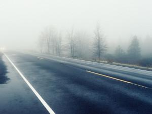 Jak správně používat mlhovky? Přední řidič použít může, zadní musí, upozorňuje policie
