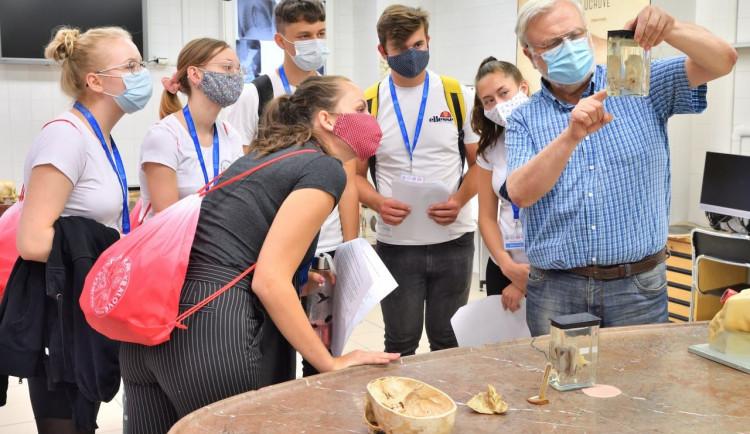 GALERIE: Medikemp Lékařské fakulty v Hradci Králové (2020)